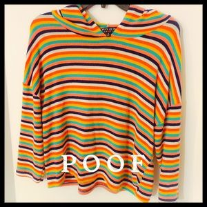 Poof Cropped Soft Striped 🌈 Rainbow Hoodie Top